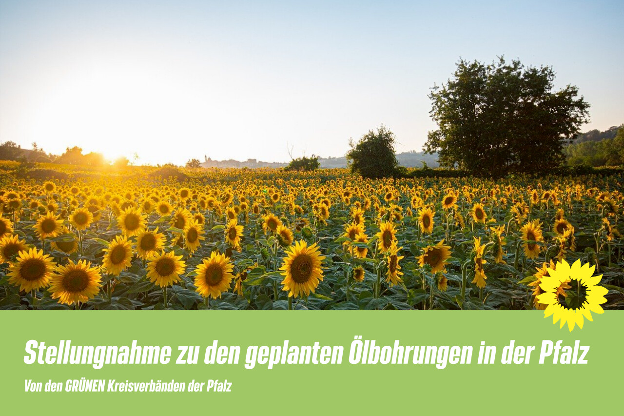 Stellungnahme zu den geplanten Ölbohrungen in der Pfalz der GRÜNEN Kreisverbände